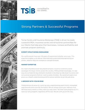 TSIB - Strong Partners & Successful Programs