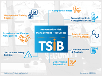 TSIB - Security Infographic
